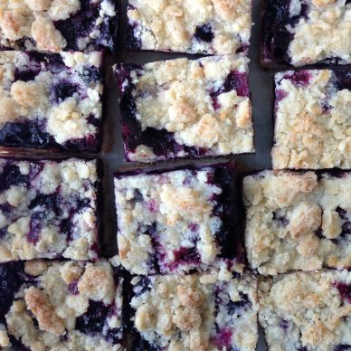 Blueberry Crumb Squares