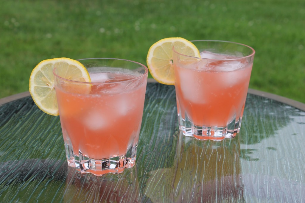 Strawberry Rhubarb Cocktails
